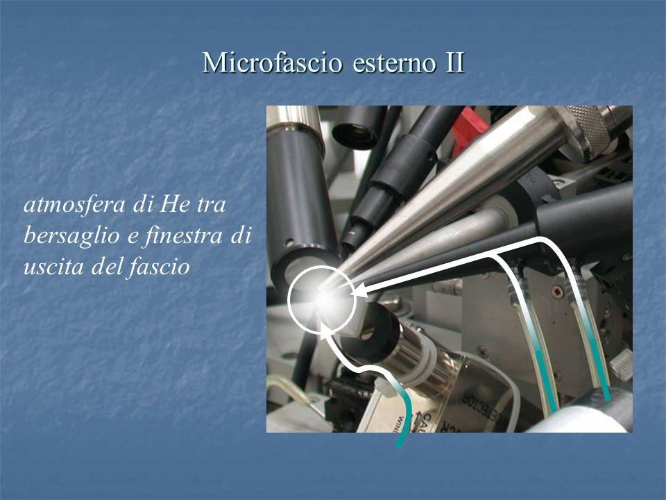 Microfascio esterno II