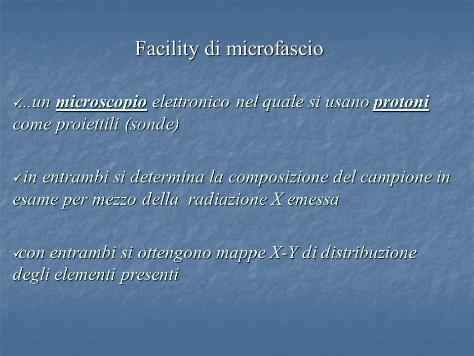 Facility di microfascio