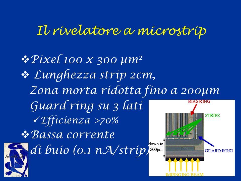 Il rivelatore a microstrip