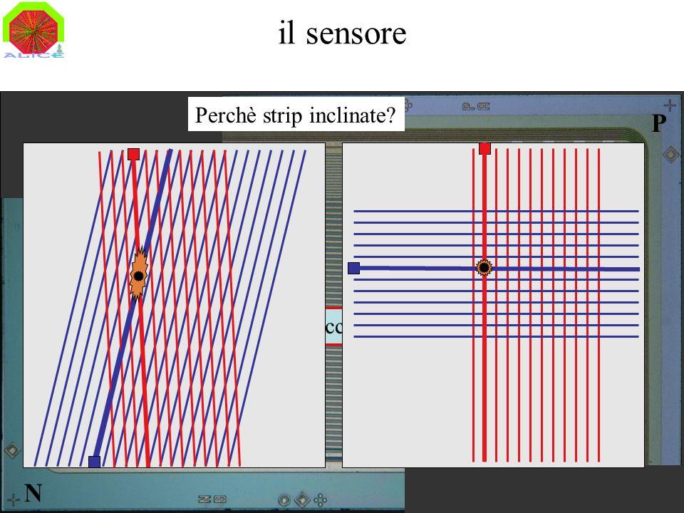 il sensore Perchè strip inclinate P N 768 strips/faccia, 96 µm pitch