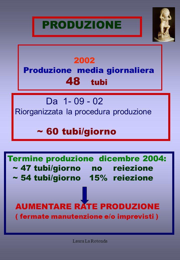 PRODUZIONE 2002 Produzione media giornaliera 48 tubi Da 1- 09 - 02