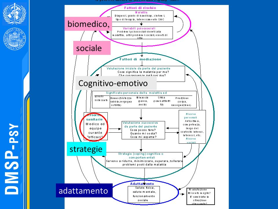 biomedico, sociale Cognitivo-emotivo strategie adattamento 149 149