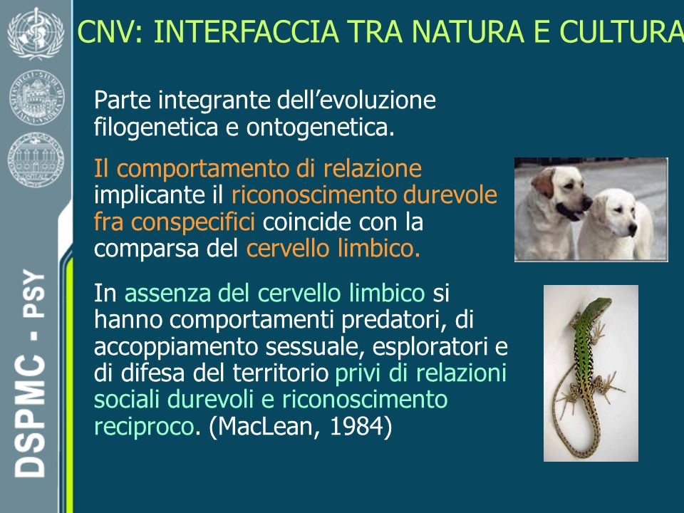 CNV: INTERFACCIA TRA NATURA E CULTURA