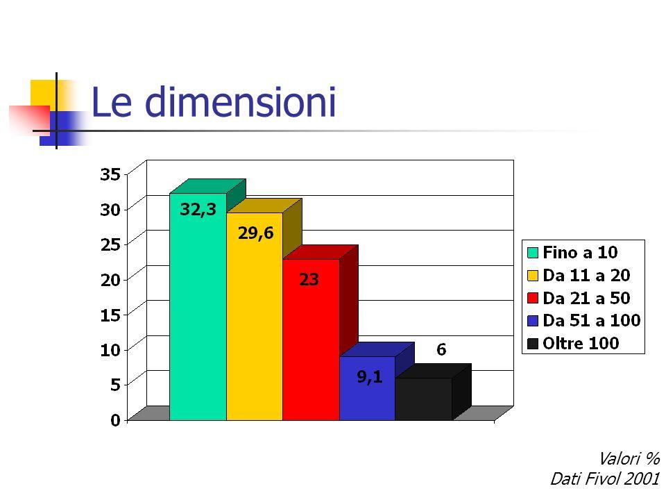 Le dimensioni Valori % Dati Fivol 2001