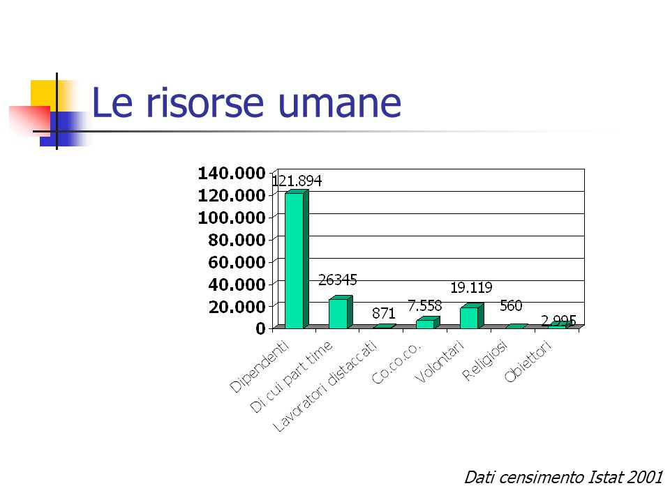 Le risorse umane Dati censimento Istat 2001