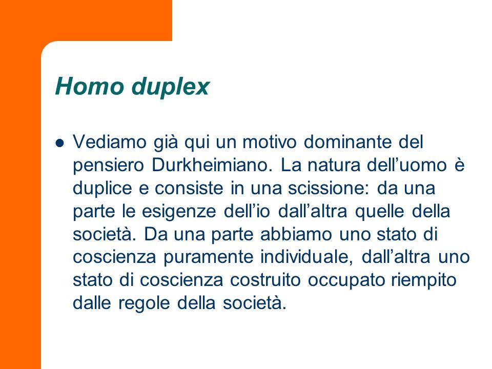 Homo duplex
