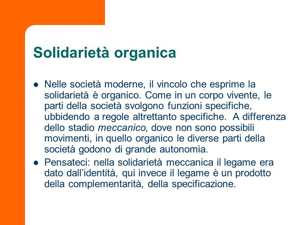 Solidarietà organica