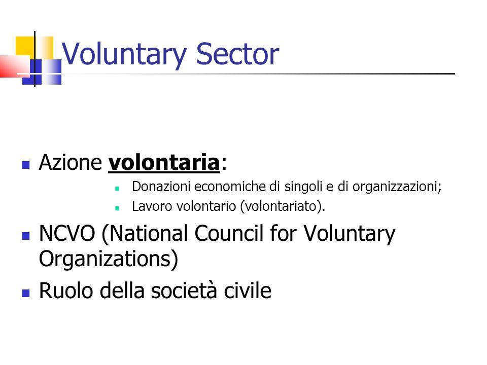 Voluntary Sector Azione volontaria: