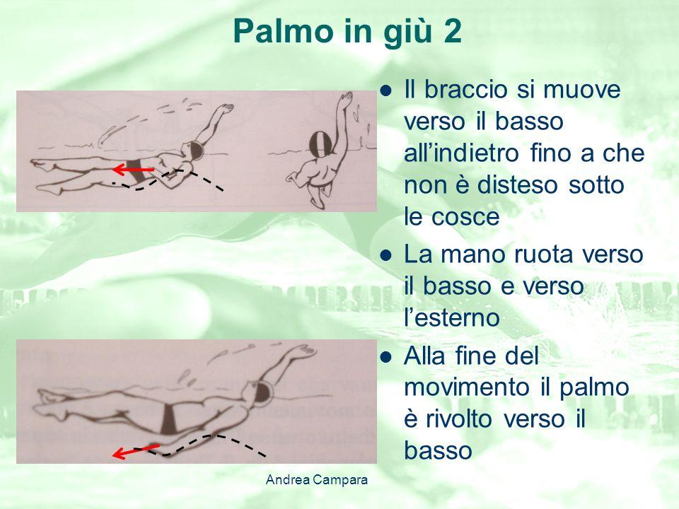 Palmo in giù 2 Il braccio si muove verso il basso all'indietro fino a che non è disteso sotto le cosce.