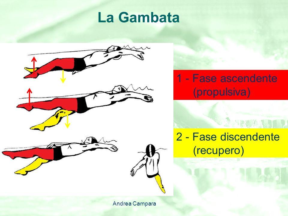 La Gambata 1 - Fase ascendente (propulsiva)