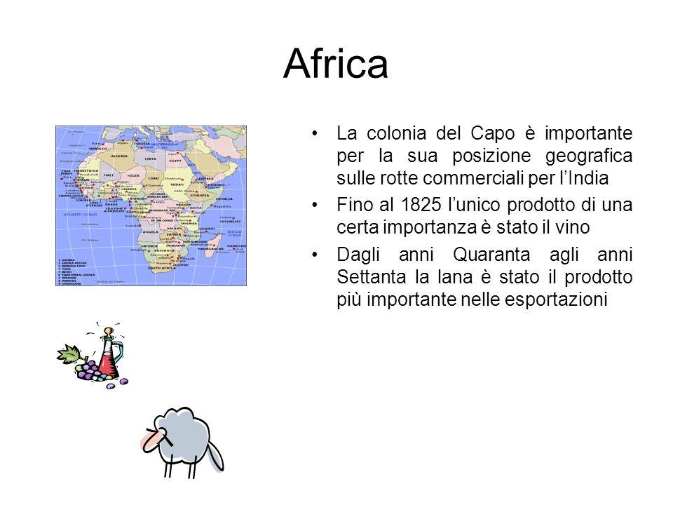 Africa La colonia del Capo è importante per la sua posizione geografica sulle rotte commerciali per l'India.