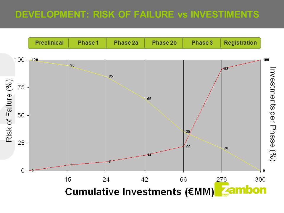 DEVELOPMENT: RISK OF FAILURE vs INVESTIMENTS