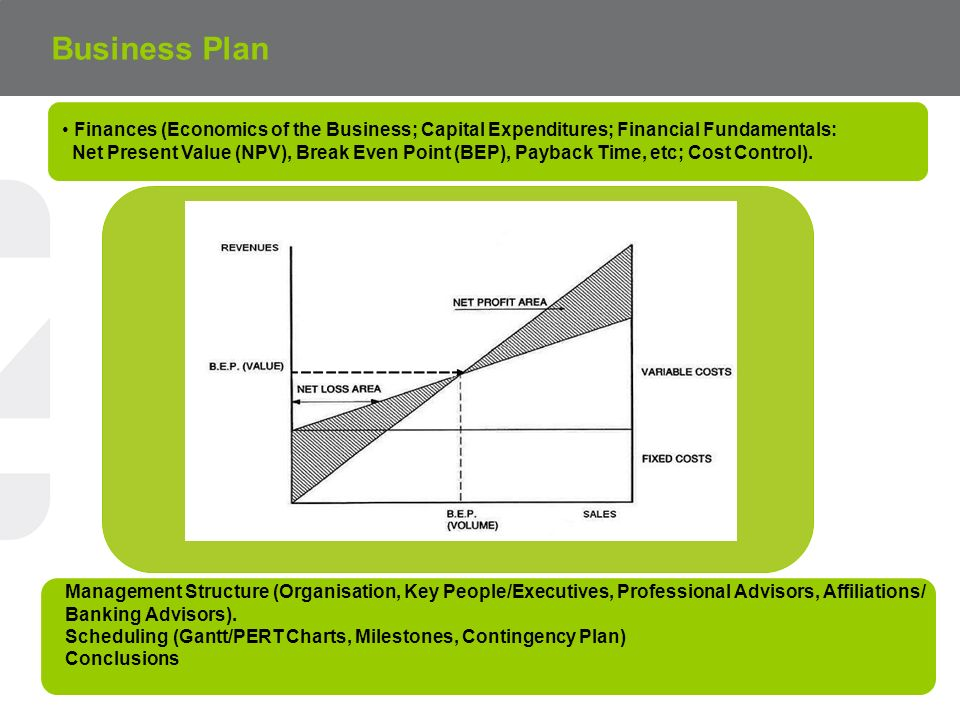 Business Plan Finances (Economics of the Business; Capital Expenditures; Financial Fundamentals:
