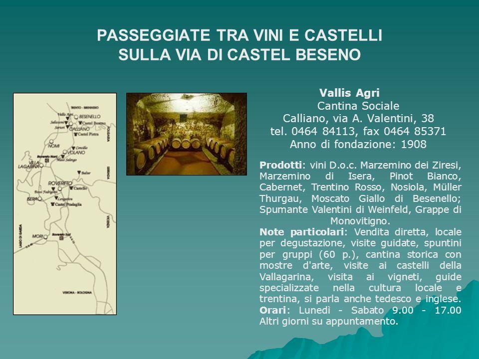 PASSEGGIATE TRA VINI E CASTELLI SULLA VIA DI CASTEL BESENO