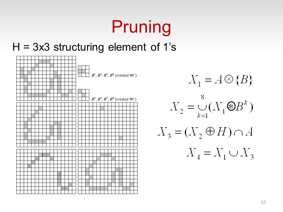 Pruning H = 3x3 structuring element of 1's