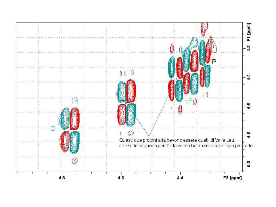 P F O Questi due protoni alfa devono essere quelli di Val e Leu