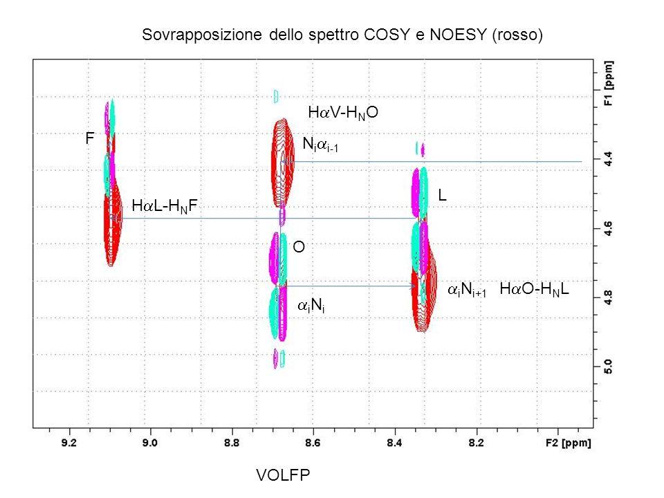 Sovrapposizione dello spettro COSY e NOESY (rosso)