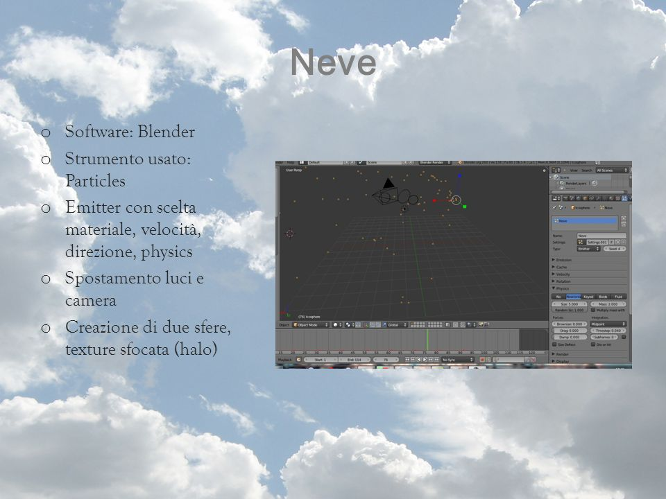 Neve Software: Blender Strumento usato: Particles