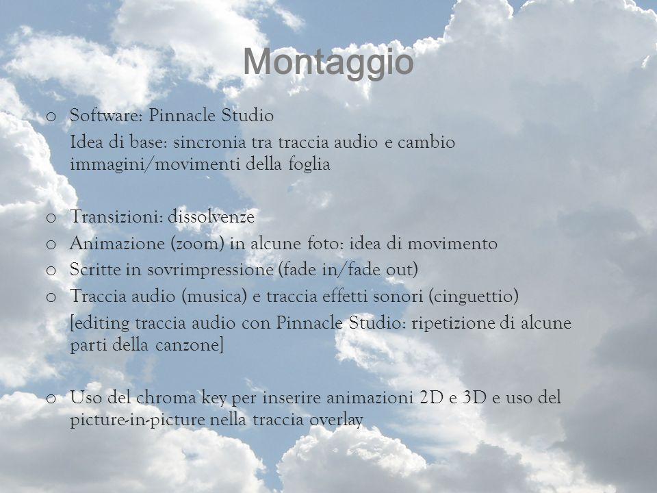 Montaggio Software: Pinnacle Studio