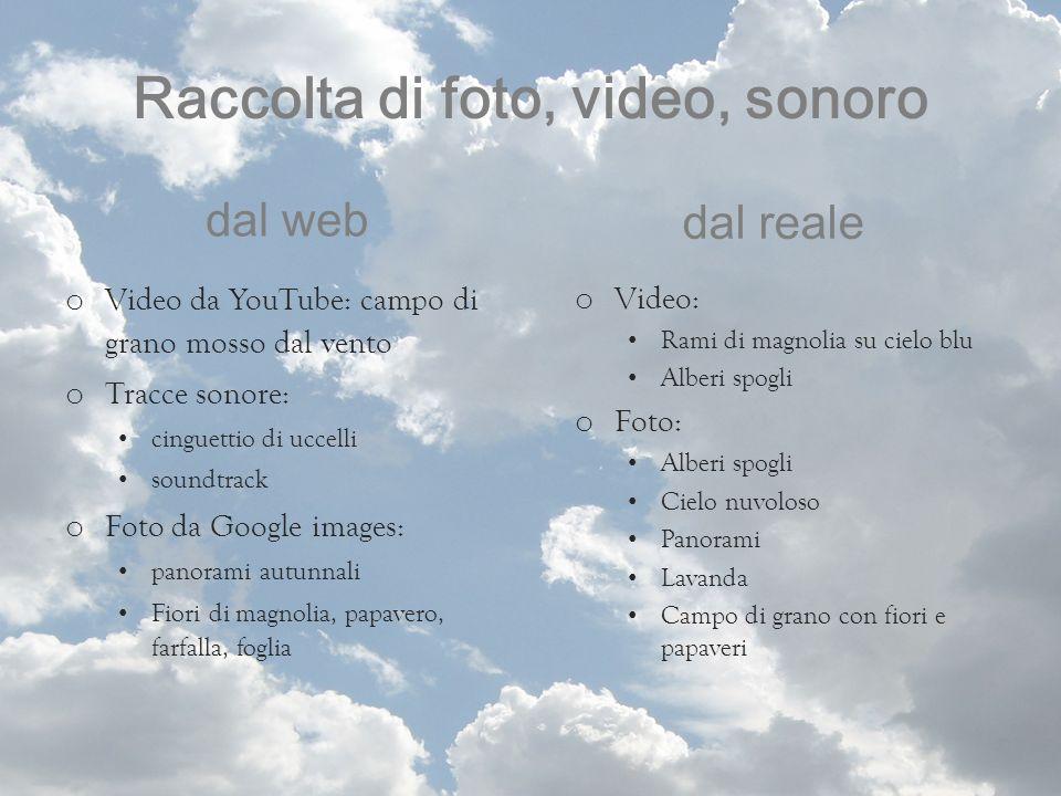 Raccolta di foto, video, sonoro