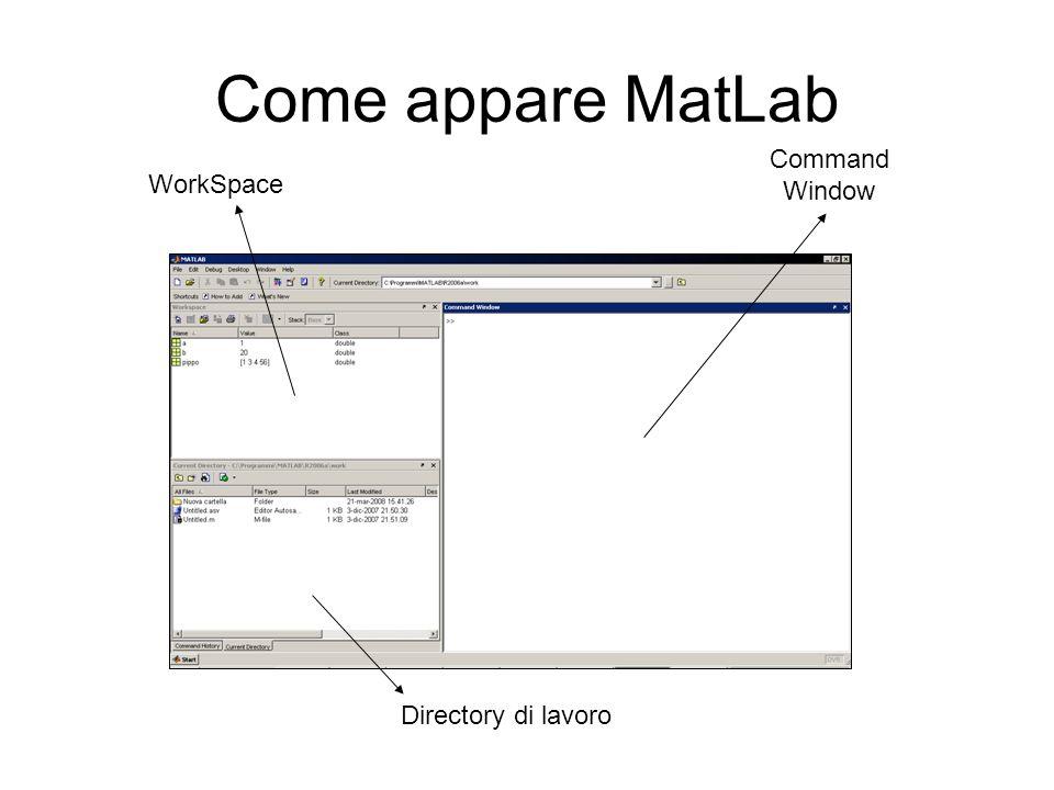 Come appare MatLab Command Window WorkSpace Directory di lavoro