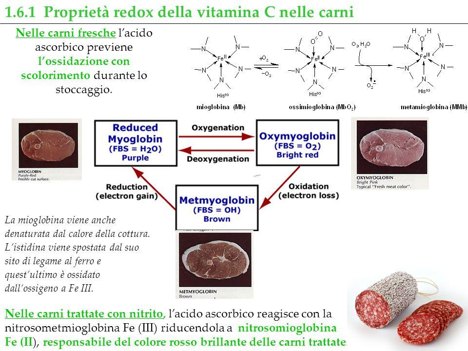 1.6.1 Proprietà redox della vitamina C nelle carni