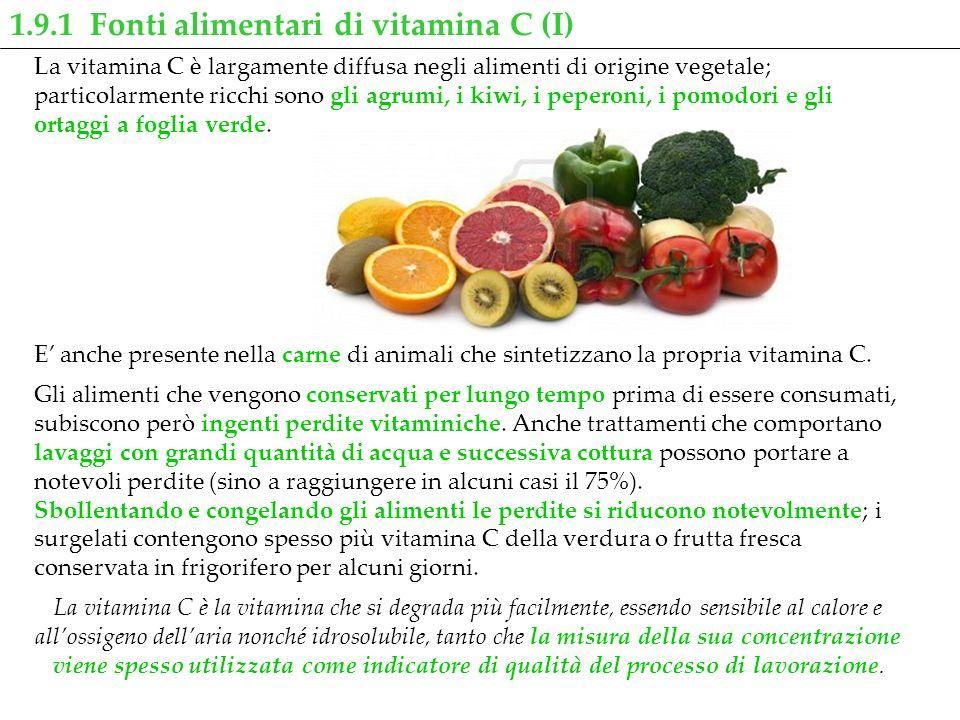 1.9.1 Fonti alimentari di vitamina C (I)
