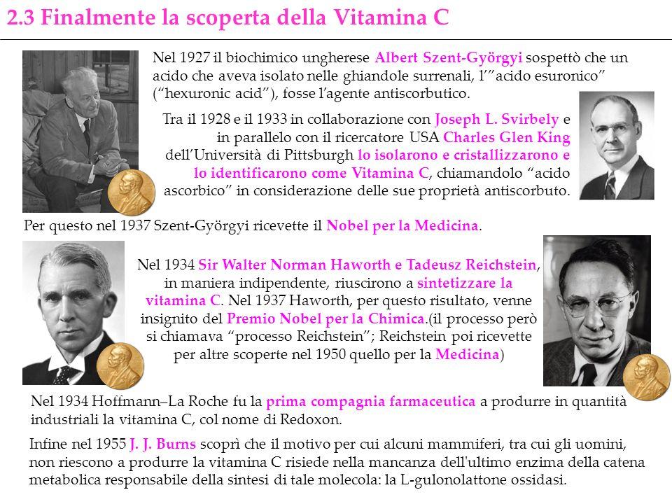 2.3 Finalmente la scoperta della Vitamina C