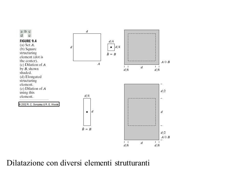 Dilatazione con diversi elementi strutturanti