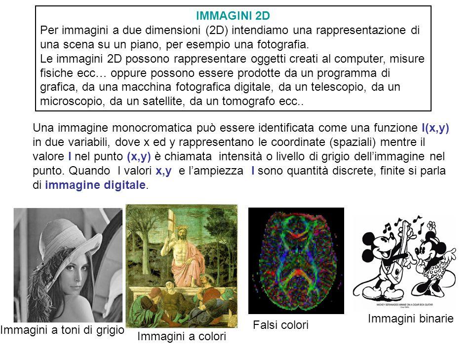IMMAGINI 2D Per immagini a due dimensioni (2D) intendiamo una rappresentazione di una scena su un piano, per esempio una fotografia.