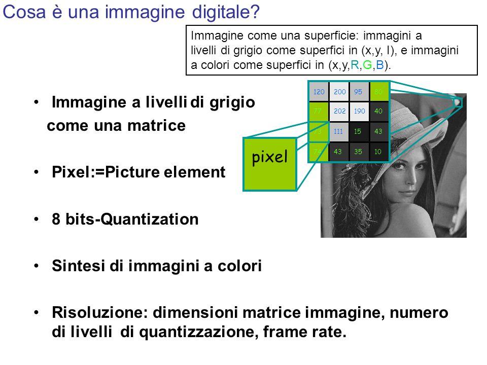 Cosa è una immagine digitale