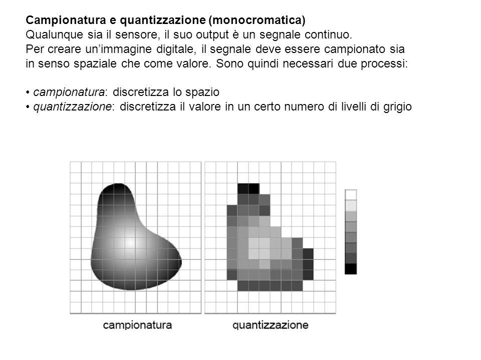 Campionatura e quantizzazione (monocromatica)