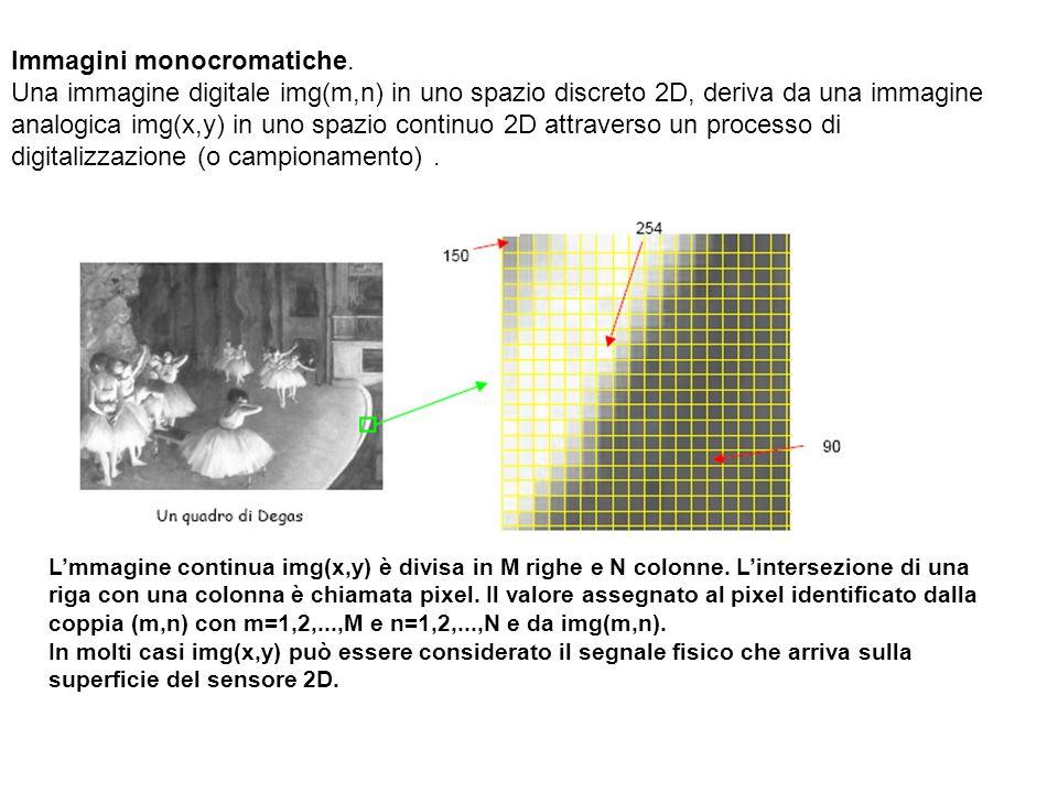 Immagini monocromatiche.