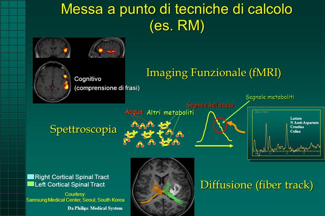 Imaging Funzionale (fMRI)
