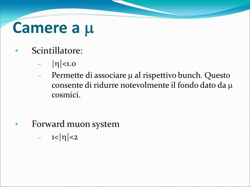 Camere a  Scintillatore: Forward muon system ||<1.0