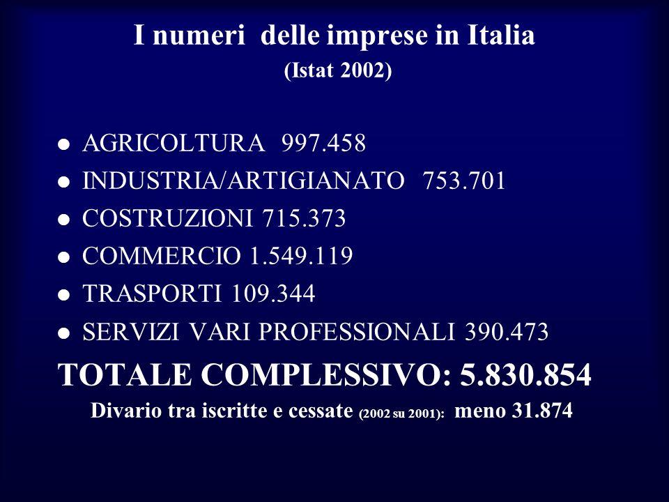 I numeri delle imprese in Italia (Istat 2002)