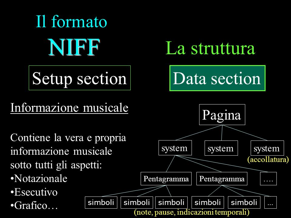 La struttura Il formato NIFF Setup section Data section Pagina