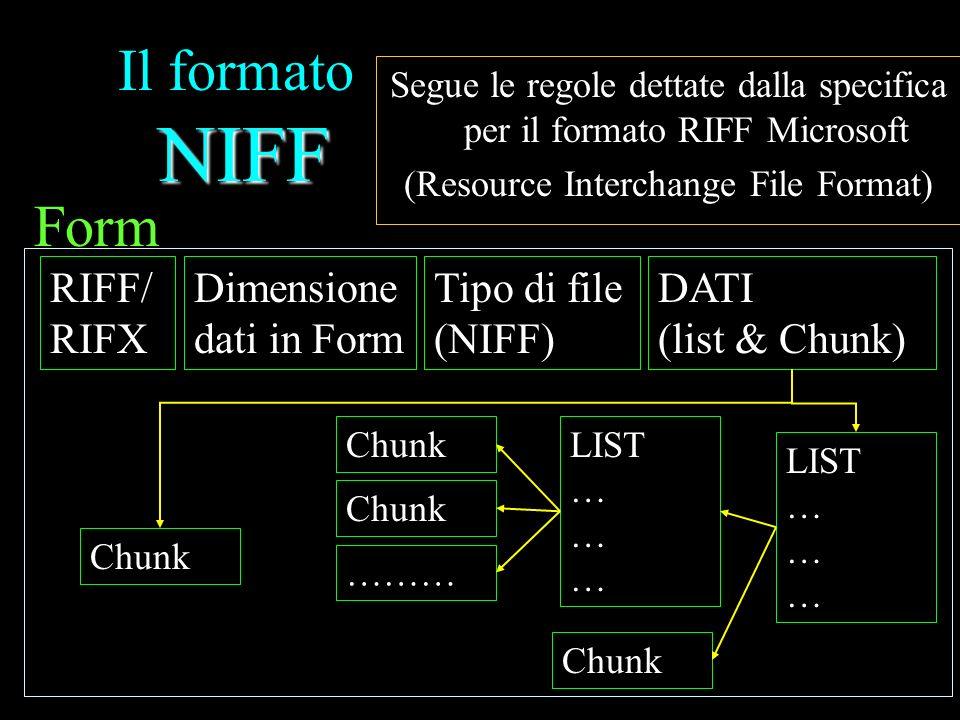 Il formato NIFF Form RIFF/ RIFX Dimensione dati in Form