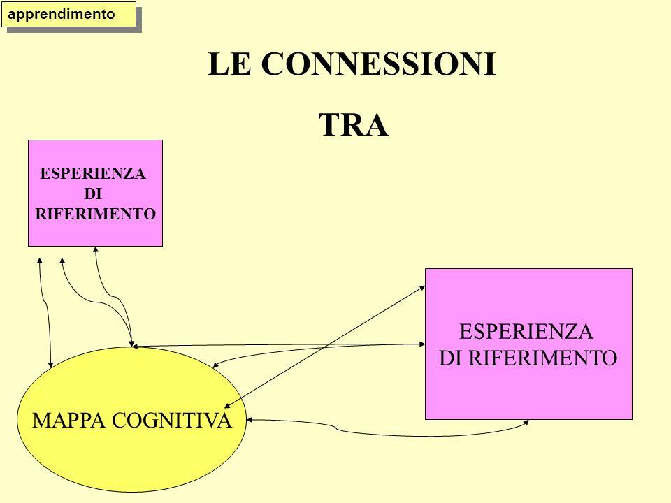 LE CONNESSIONI TRA ESPERIENZA DI RIFERIMENTO MAPPA COGNITIVA