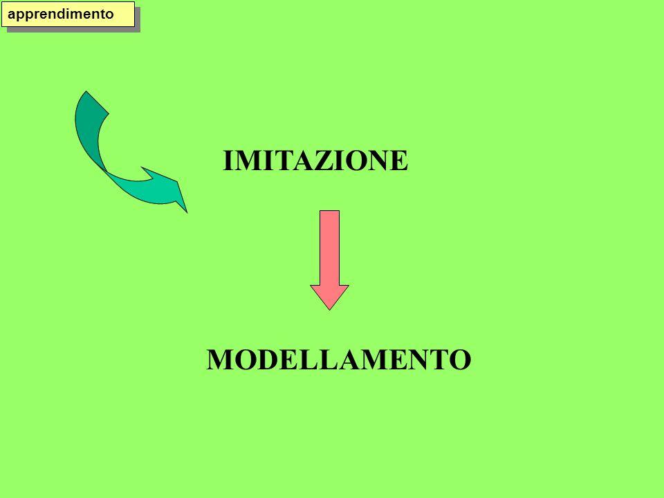 apprendimento IMITAZIONE MODELLAMENTO