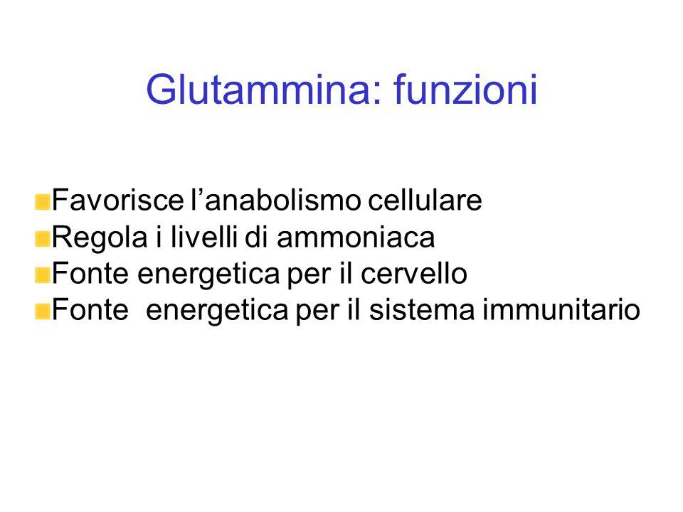 Glutammina: funzioni Favorisce l'anabolismo cellulare