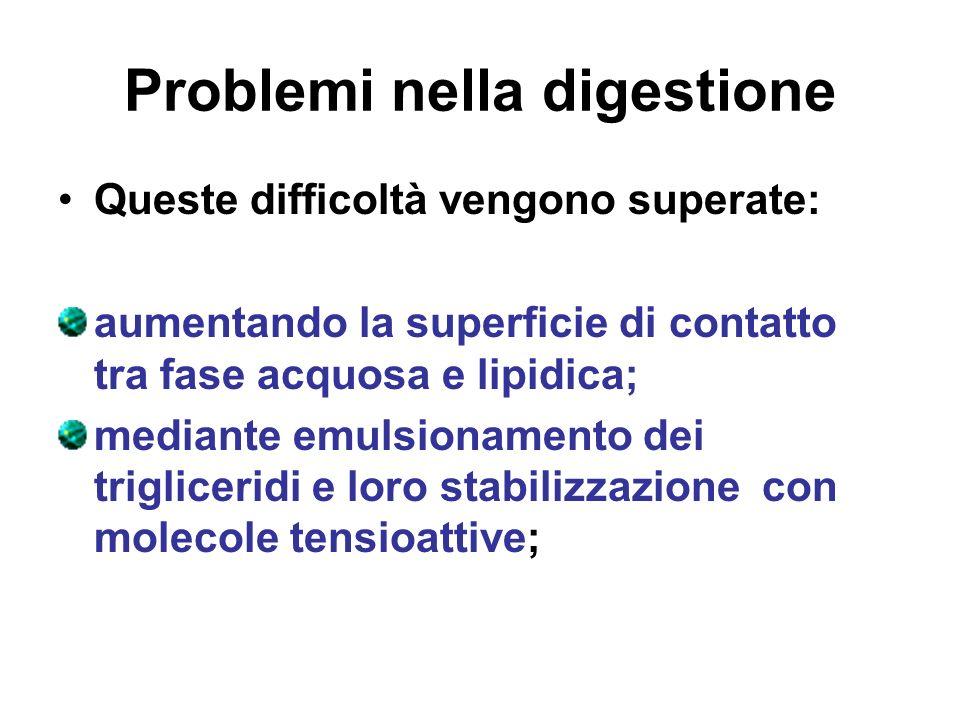 Problemi nella digestione