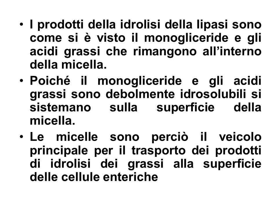 I prodotti della idrolisi della lipasi sono come si è visto il monogliceride e gli acidi grassi che rimangono all'interno della micella.