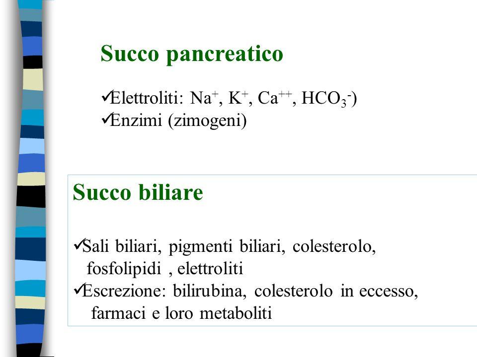 Succo pancreatico Succo biliare Elettroliti: Na+, K+, Ca++, HCO3-)