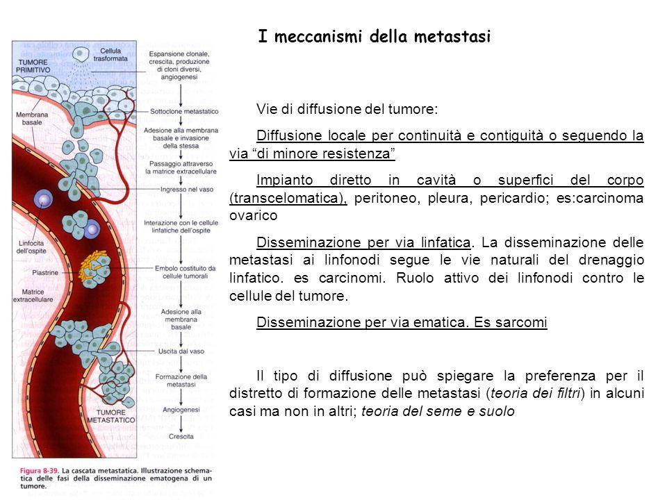 I meccanismi della metastasi