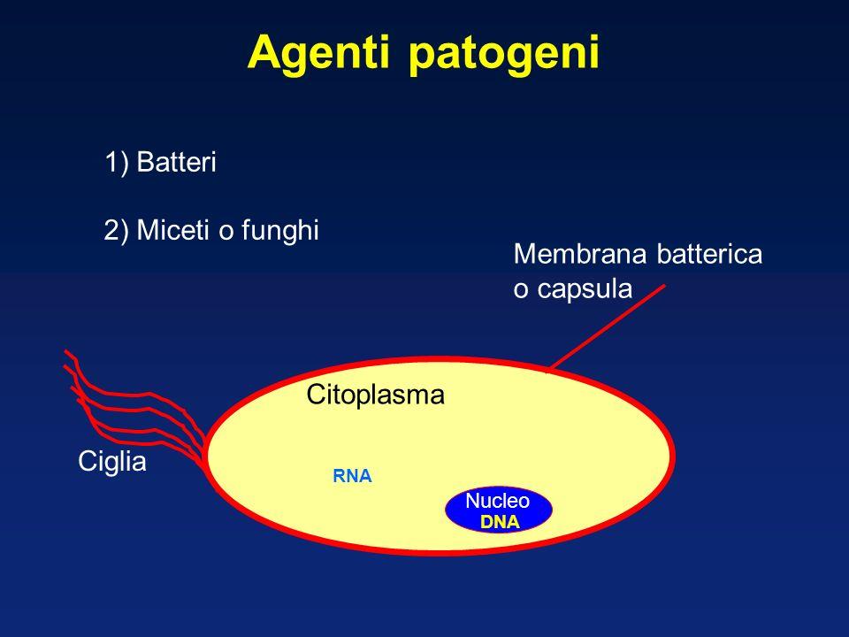 Agenti patogeni 1) Batteri 2) Miceti o funghi Membrana batterica
