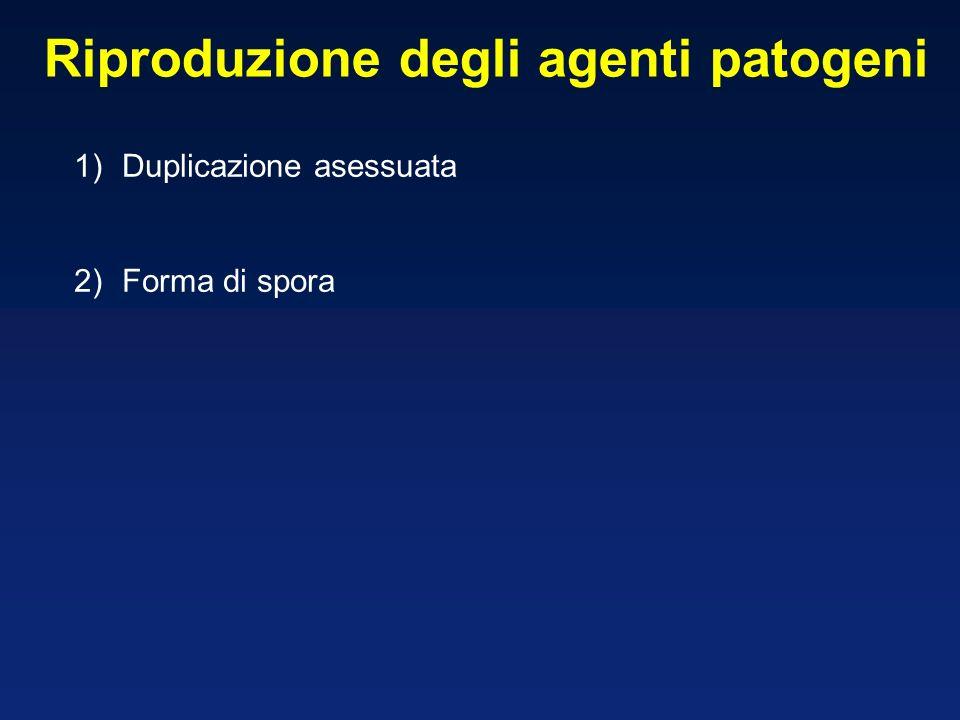 Riproduzione degli agenti patogeni