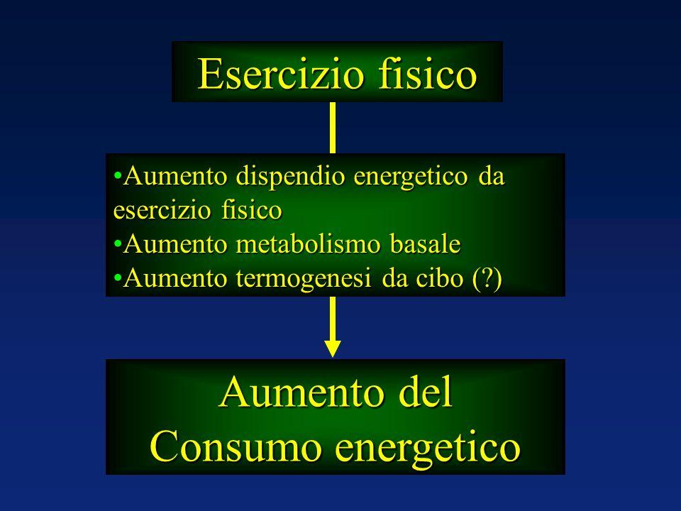 Esercizio fisico Aumento del Consumo energetico