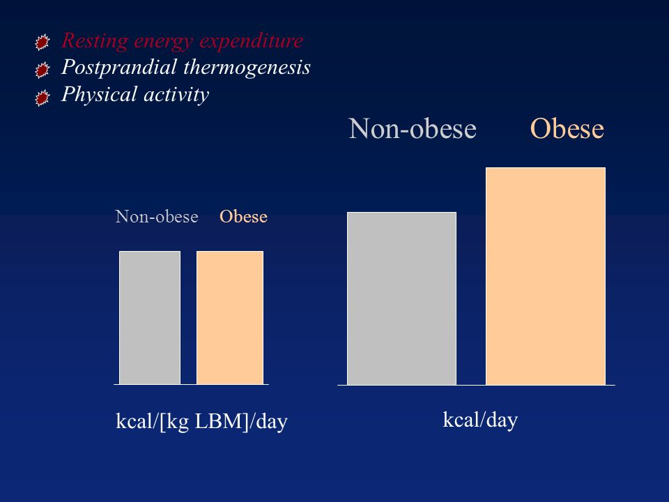 Non-obese Obese Resting energy expenditure Postprandial thermogenesis