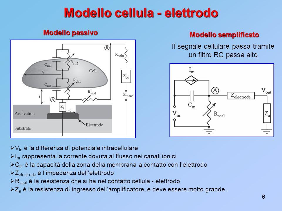 Modello cellula - elettrodo